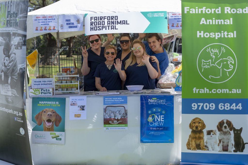 Pets Day Out Fairford Rd Animal Hosp