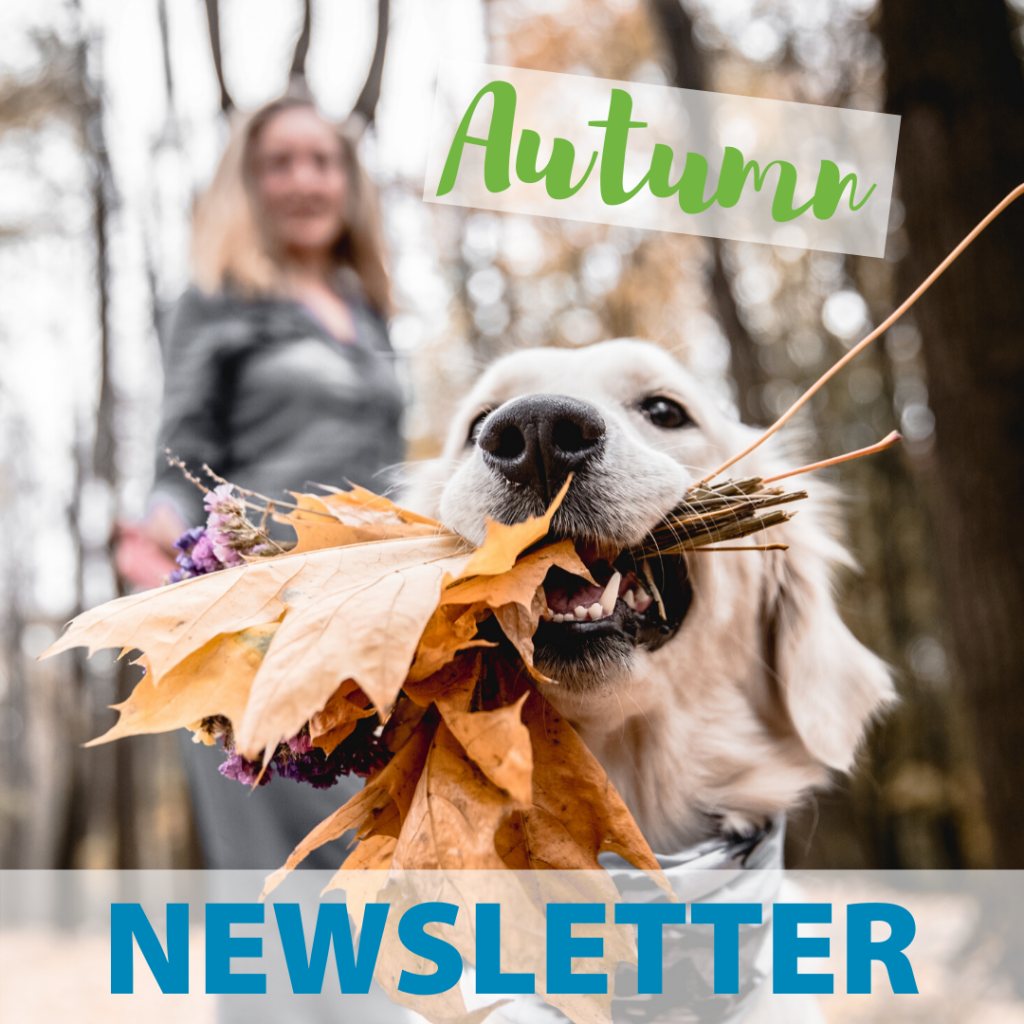 FRAH Autumn Newsletter