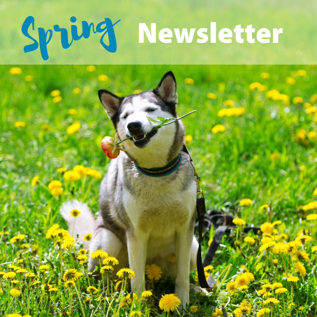 FRAH Spring Newsletter