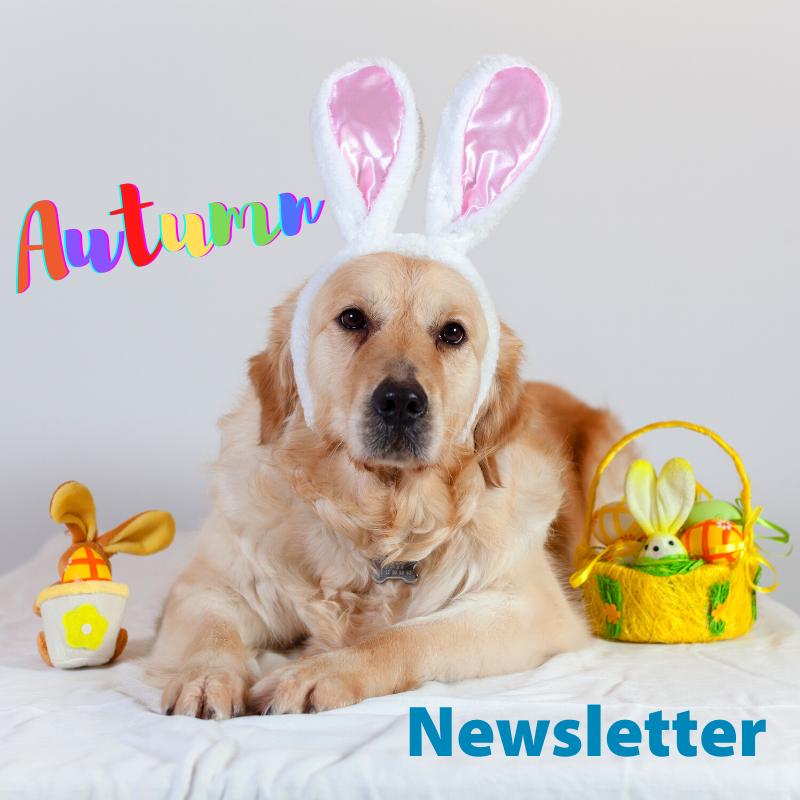 Fairford Road Autumn Newsletter
